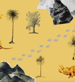 'Dinoland' adventure